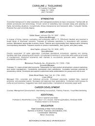professional business resume template sle resume of business owner schtuff resumes templates