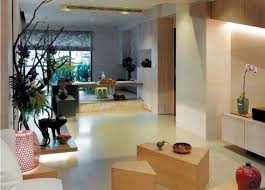 Asian Interior Designer by Asian Apartment Ideas Inspiration Idea Apartment Ideas For Couples