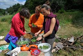 cuisine plantes sauvages découverte des plantes sauvages comestibles aluna voyages