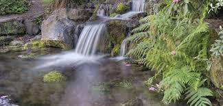 Backyard Pond Supplies by Virginia Discount Pond Supplies Water Garden Accessories