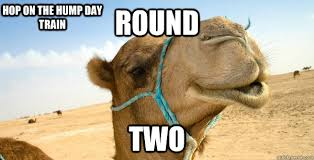 Hump Day Camel Meme - round two hop on the hump day train catch 22 camel quickmeme