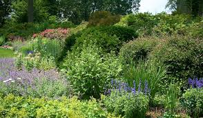 Landscape Management Services by Landscape Management Services Keeping Properties Stunning All Year