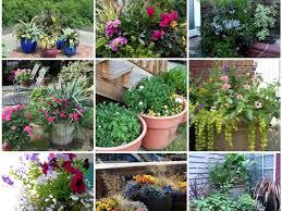 small patio vegetable garden ideas cori u0026matt garden