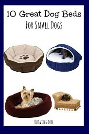 Cave Beds For Dogs Best 25 Dog Beds For Small Dogs Ideas Only On Pinterest Diy Dog