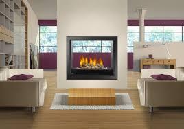 High Fireplace Napoleon Hd 81 See Thru Gas Fireplace