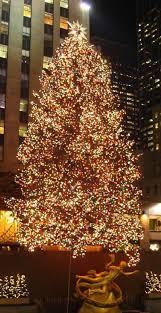 new york christmas tree lighting 2018 30 best of outdoor christmas tree lights light and lighting 2018