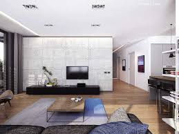 open concept small apartment furniture and decorating choice