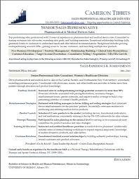 sales resume example resume cv cover letter sample resume for