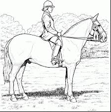 brilliant rearing horse coloring pages with free horse coloring