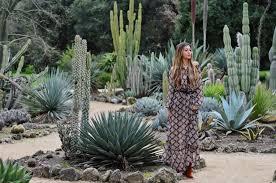 Cactus Garden Ideas Garden Cactus Garden Inspirational Catus Garden Home Design Ideas