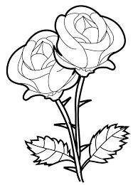 imagenes para colorear rosas rosas para colorear para a rosa cromatica para imprimir y colorear