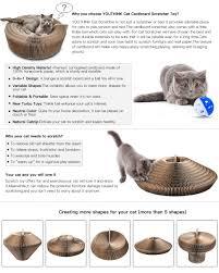 Cool Cat Scratchers Amazon Com Cat Scratcher Lounge Collapsible Cardboard Scratcher