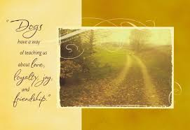 dirt road by field loss of pet sympathy card greeting cards