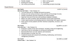 Writing Resume Summary Hair Stylist Resume Hair Stylist Resume Examples Hair Stylist