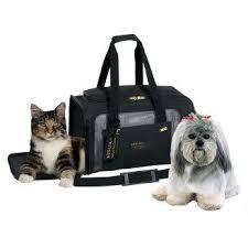 christmas day hours walmart target dog supplies pets target