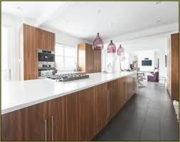 walnut kitchen ideas impressing kitchen classic modern walnut cabinets in find best