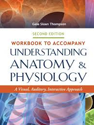 workbook to accompany understanding anatomy and physiology