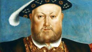 henry viii did you biography