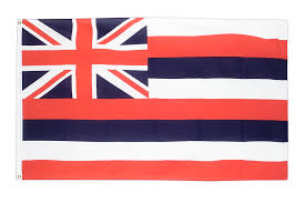 Texas Flag And Chile Flag Flagge Hawaii Kaufen 90 X 150 Cm Flaggenplatz De