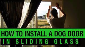 doggy door glass door how to install a dog door in a sliding glass door petsafe dog