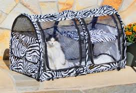 how to travel with a cat images Rv wheel life blog archive rving with pets part 4 39 cats jpg