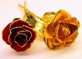 gold roses 1 gold dipped and 1 gold trimmed gold roses