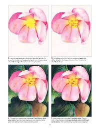 learn to paint watercolor flowers strathmore artist papers