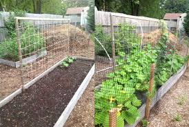 how to build a garden trellis for cucumbers the garden inspirations