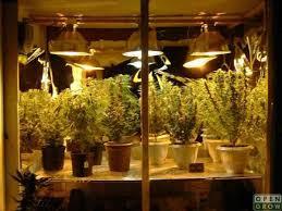 Grow Room Lights 1000w Light Fixture Indoor Talk Opengrow