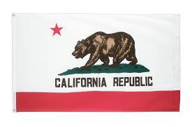 California Republic Flag Flagge Kalifornien Kaufen 90 X 150 Cm Flaggenplatz At