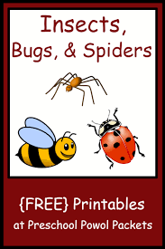 insect bug u0026 spider themed free preschool printables free