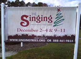 before a crowd of 5 000 the singing christmas trees come