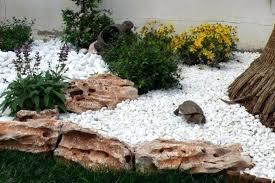 Decorative Rocks For Garden Decorative Stones For Garden Techsolutionsql Club