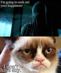 Grumpy Cat No Meme - grumpy cat part 1