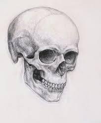 sketching skulls best 25 skull drawings ideas on back