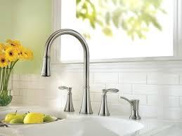 Delta Two Handle Kitchen Faucet Kitchen Faucet Leaking At Base Bloomingcactus Me