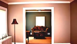 paint color ideas for living room ecoexperienciaselsalvador com