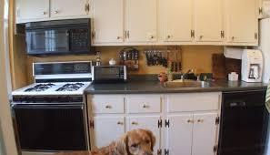 interior home design kitchen kitchen cabinet wonderful designer kitchen home interior and