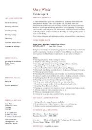 Leasing Agent Resume Example by Photo Essays Archives Part Time Traveler Cv Example Travel