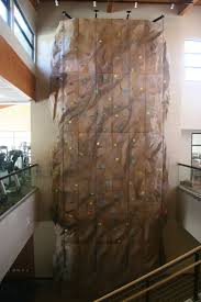 eldorado is the preferred rock climbing wall builder for ymcas modular indoor rock climbing wall in the flagstaff ymca