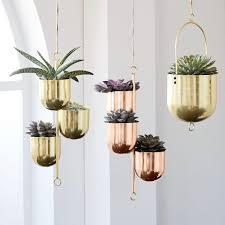 wall mounted planters planter boxes u0026 terrariums west elm au