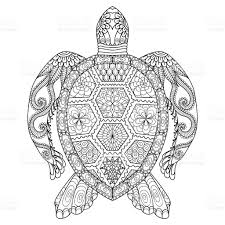 turtle coloring page stock vector art 495056338 istock