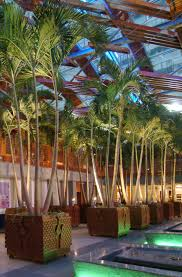 interior landscape design in malls and commercial centres