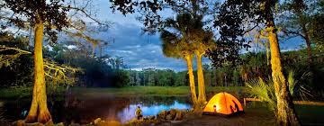 Florida nature activities images Top 5 florida outdoor adventures activities visit florida jpg