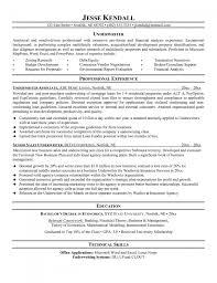 resume for insurance job resume for your job application