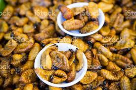 insectes dans la cuisine edible insecte plats de la cuisine thaï en thaïlande photos et