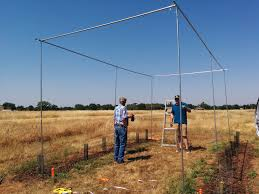 building a 20ft high hop trellis michael martin