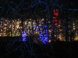 enchanted garden lights 28 images pin by see rock city on