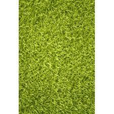 Modern Green Rugs Modern Contemporary Lime Green Rugs Allmodern