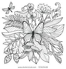 coloring pages insects bugs coloring pages of insects coloring pages plants coloring pages